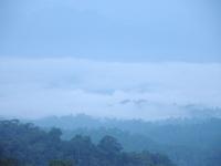 Morning mist at Khaeng Krachan NP