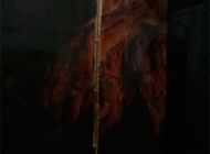 Moses' staff