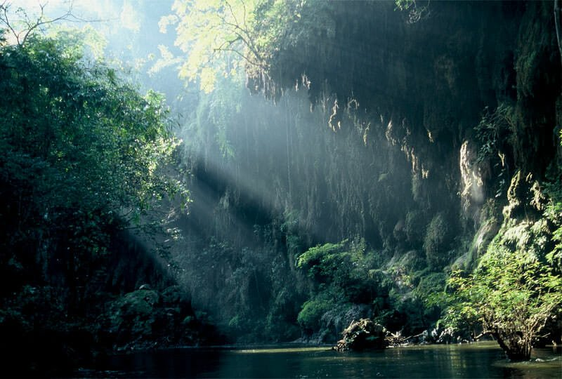 Western Forest Complex - Mae Klong river