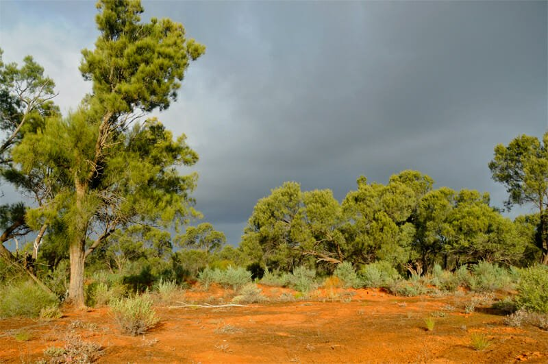 Approaching storm in NSW Outback