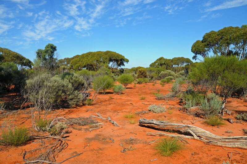Colours of australian outback for South australia landscape