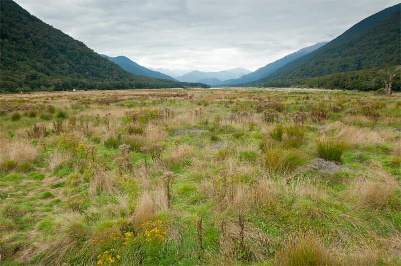 Pleasant Flat, Mt. Aspiring National Park