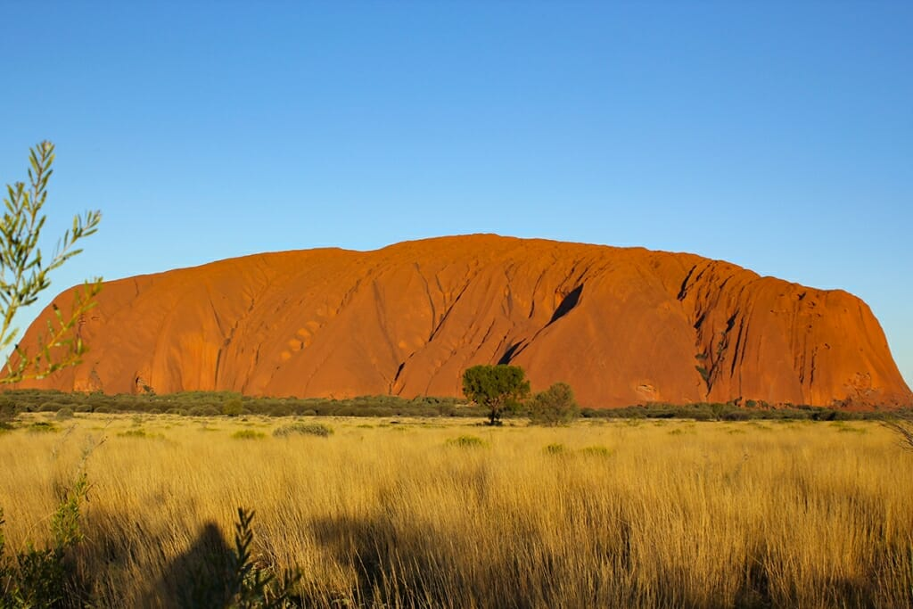 Uluru in the late afternoon light