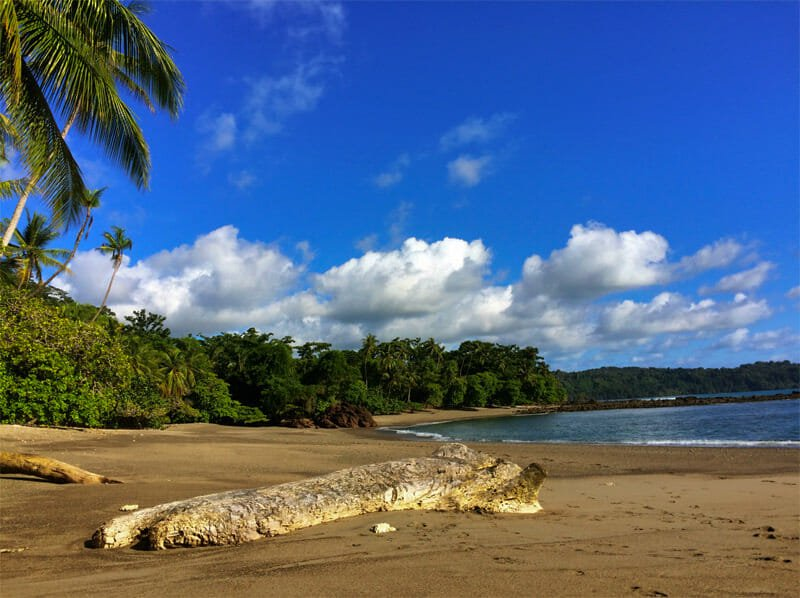 whale-watching in Drake bay, Costa Rica