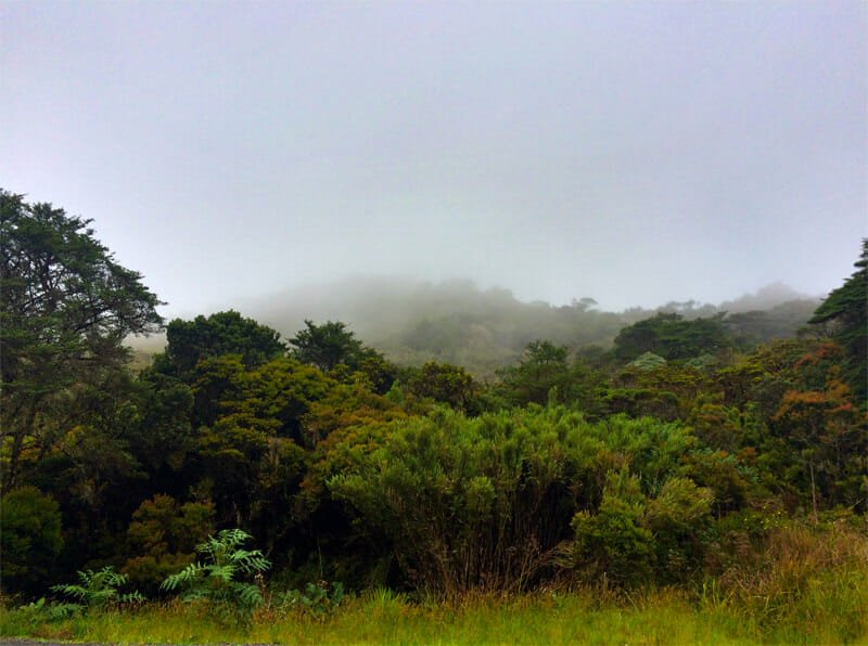 Drive across Costa Rica's continental divide