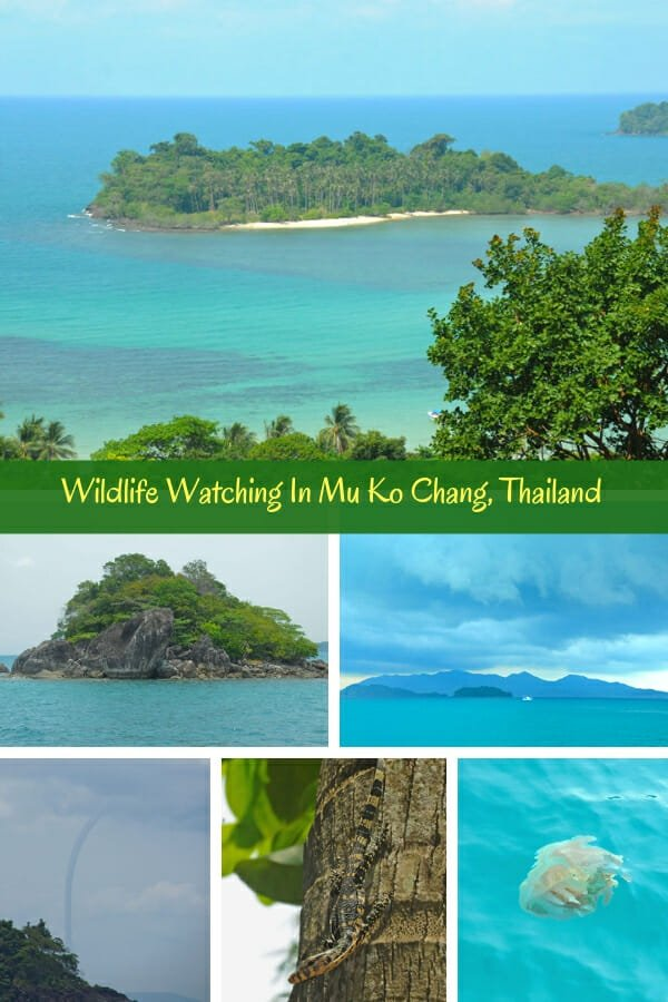 Wildlife Watching In Mu Ko Chang