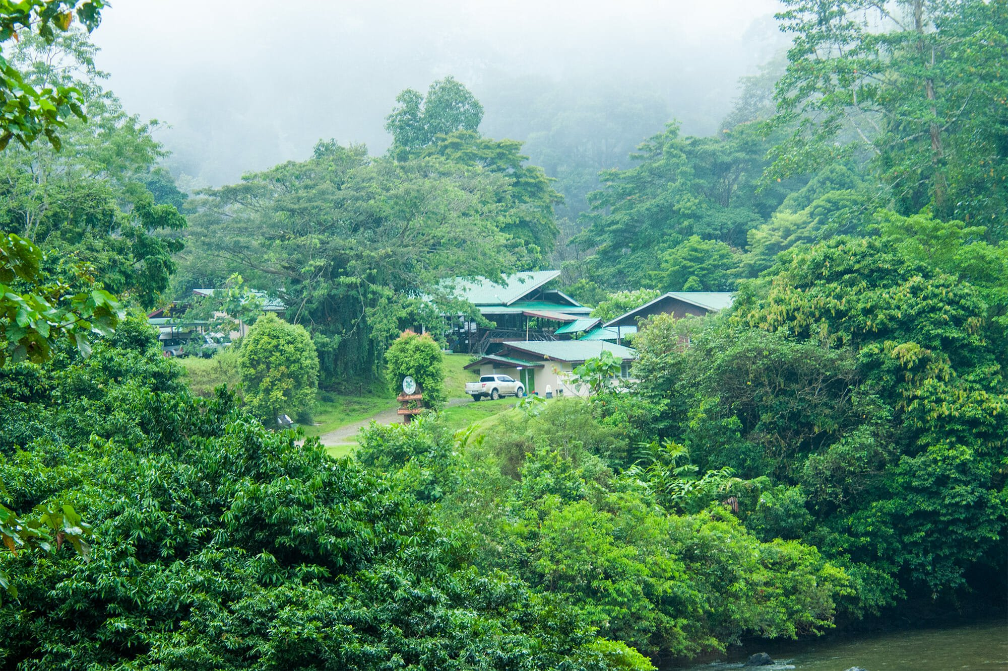 Danum Valley Field Center in Borneo