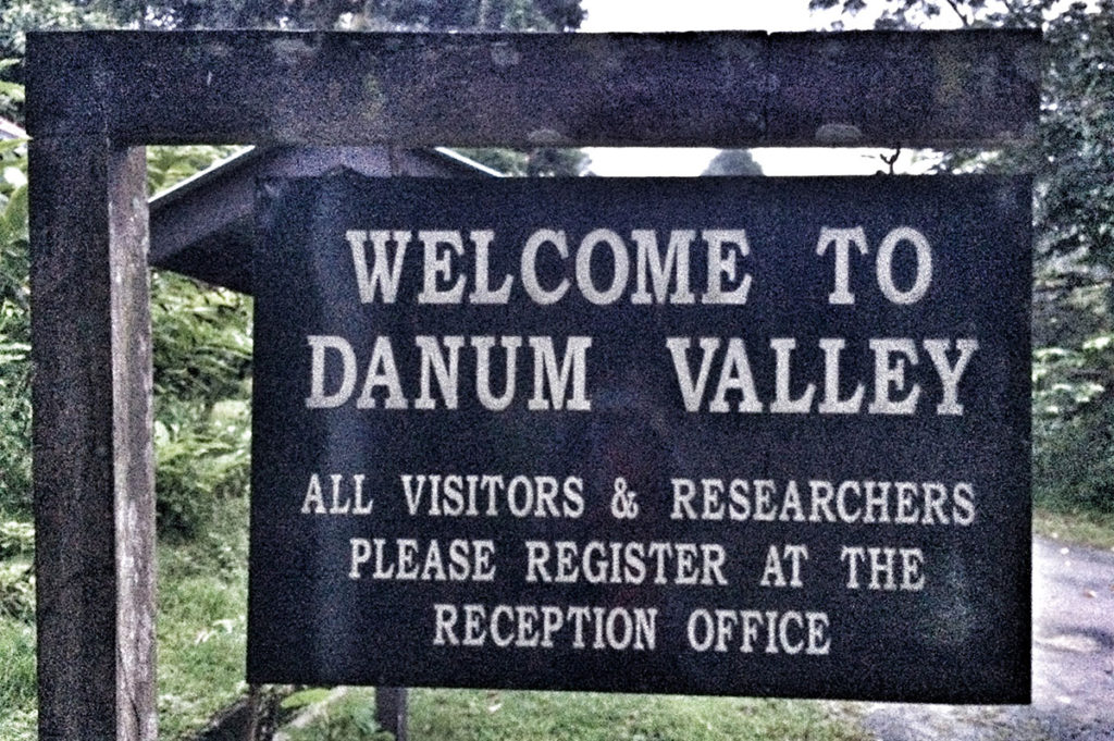 Welcome to Danum Valley