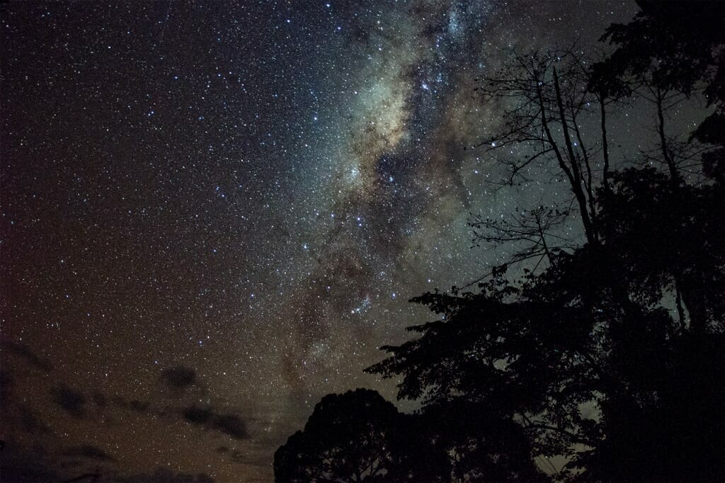 Milky Way over Deramakot Forest Reserve, Borneo