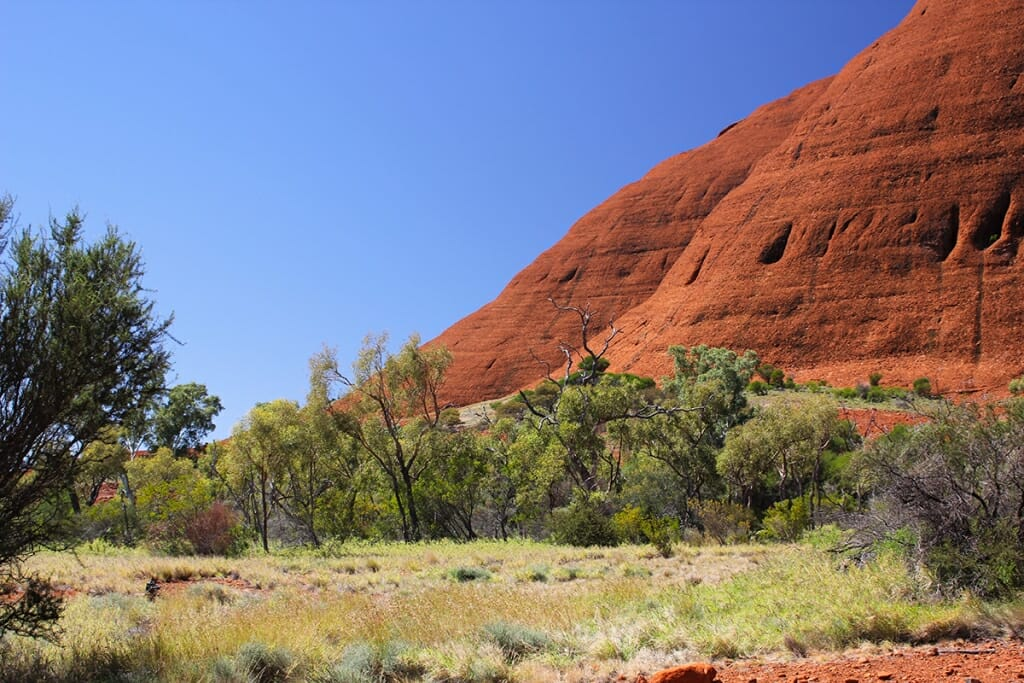 At the foot of Kata Tjuta domes