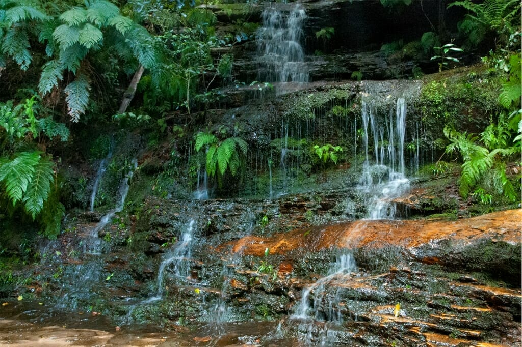 Small streams at the bottom of the first tier of Wentworth Falls