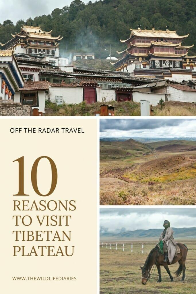 10 Reasons Why You Should Visit Tibetan Plateau #theroofoftheworld #remotechina