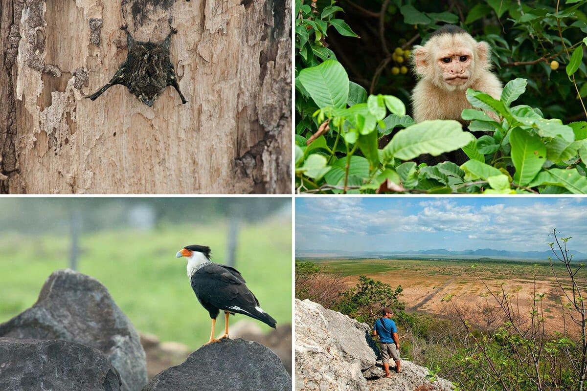 Exploring Palo Verde National Park in Costa Rica