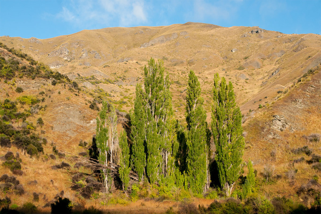 Crown range Otago New Zealand