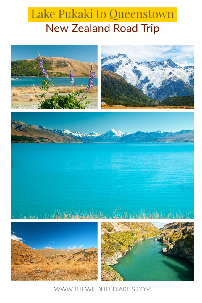 Lake Pukaki to Queenstown road trip