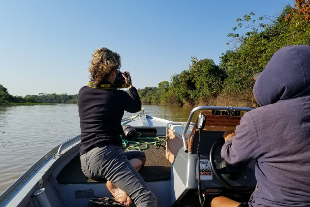 searching for jaguars in Brazil on a boat safari from Porto Jofre