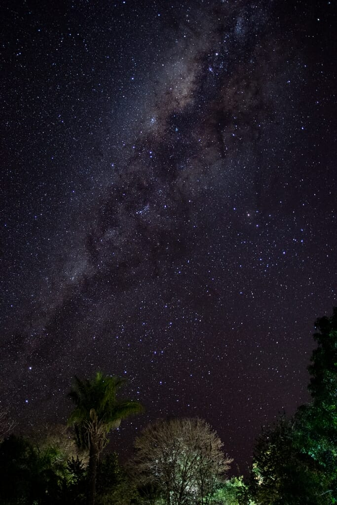 Milky Way over the Pantanal, Brazil
