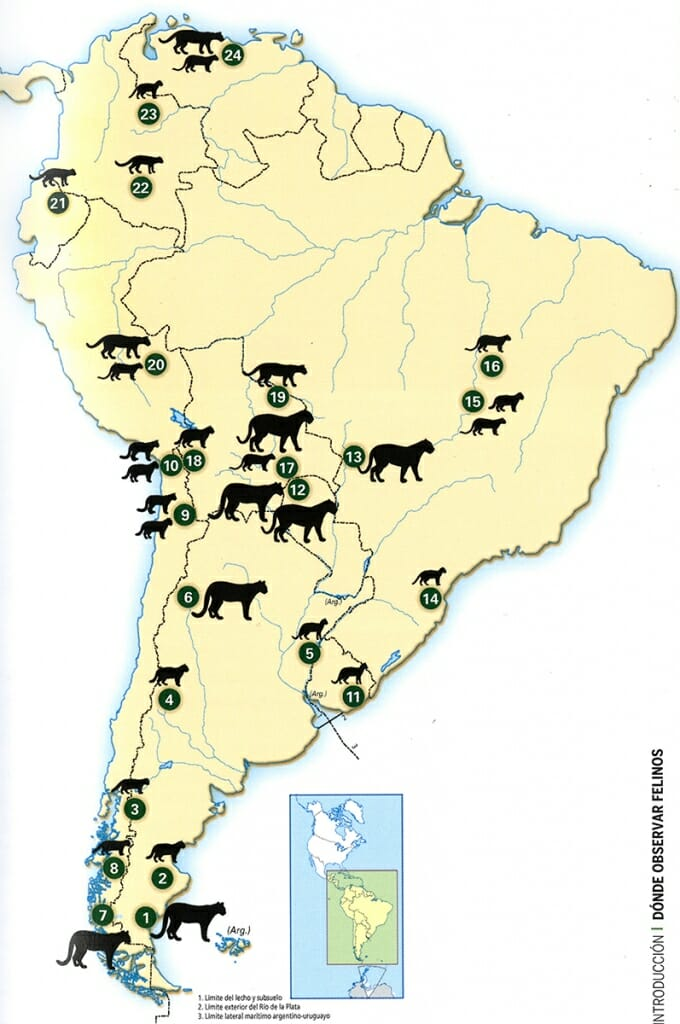 Map of Wild cat sites in South America
