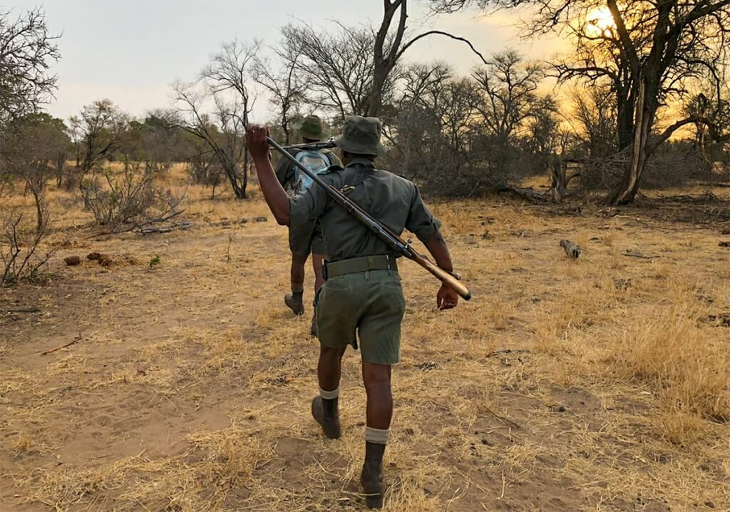 bush rangers Kruger National Park