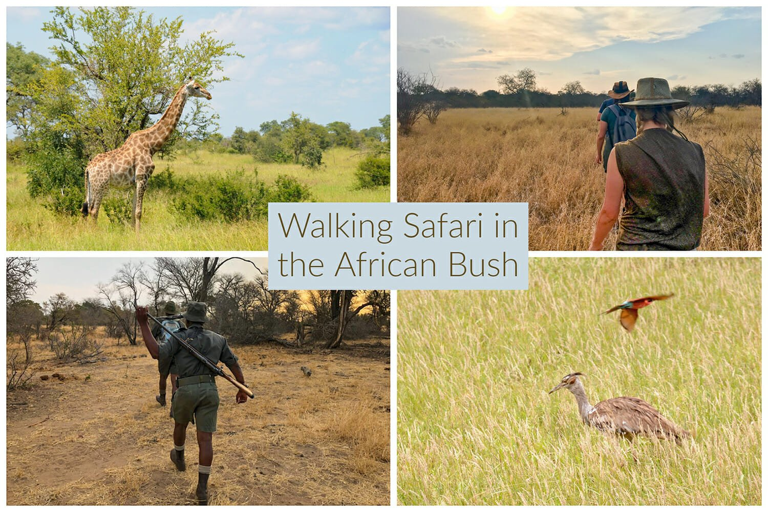 Walking Safari in the South African bush