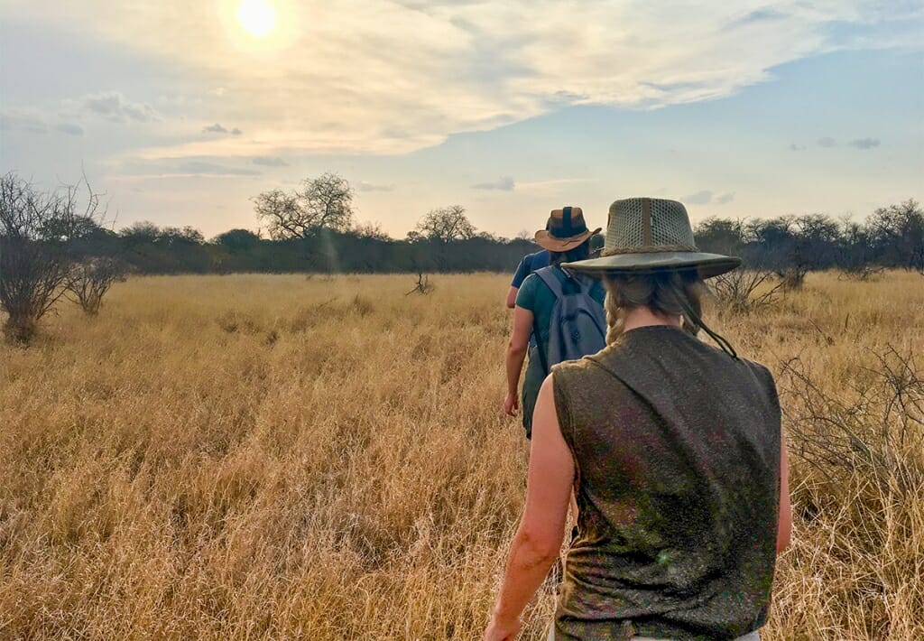 Walking safari in the African bush