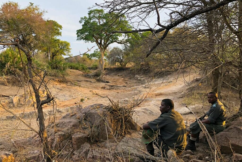 rangers in the african bush