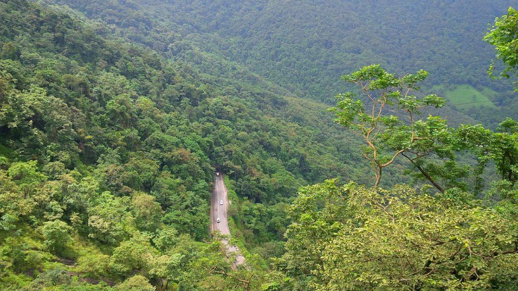 Kerala National Parks - Wayanad Pixabay