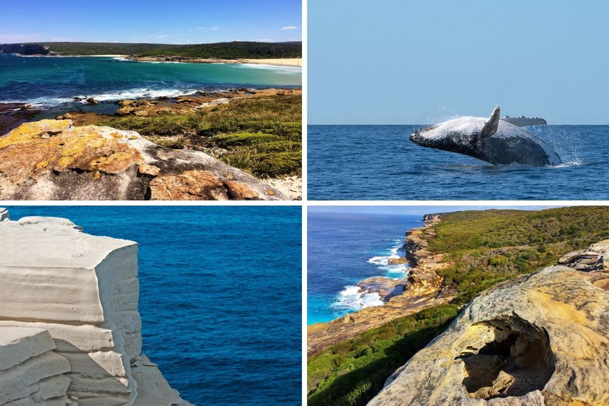Bundeena to Marley Beach walk in Royal National Park