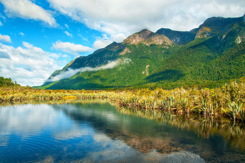 Milford Sound day tour from Queenstown - Mirror lake