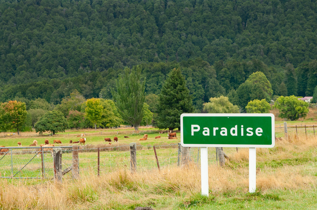 Paradise road sign on New Zealand South Island road trip