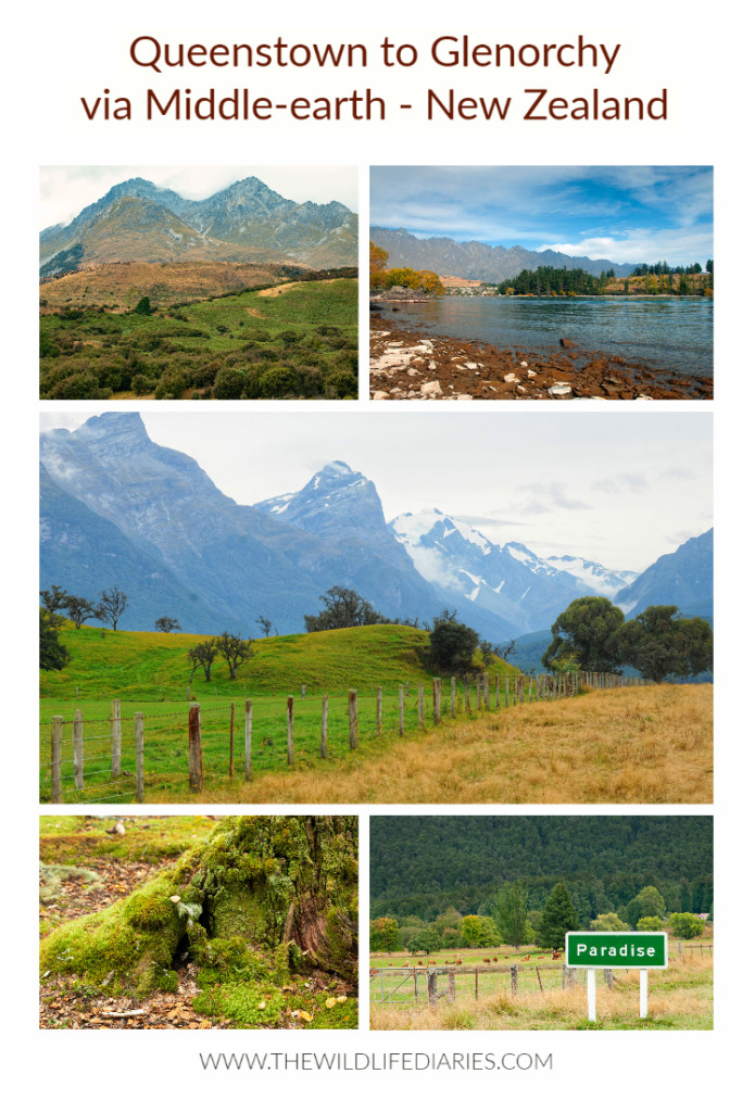 Queenstown to Glenorchy via Middle-earth #LOTR #filminglocations #NZSouthIsland #NZroadtrip