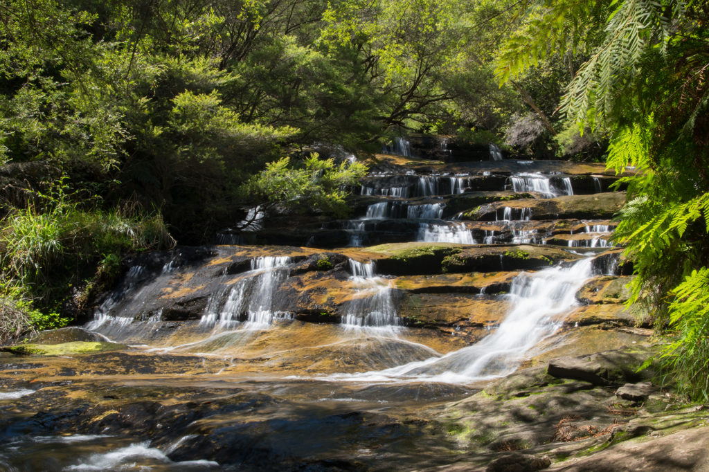 Blue Mountains waterfalls - Leura Cascades