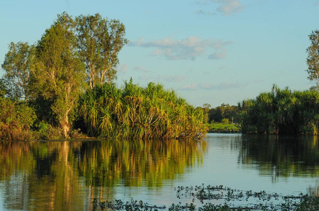 Yellow water billabong in Kakadu
