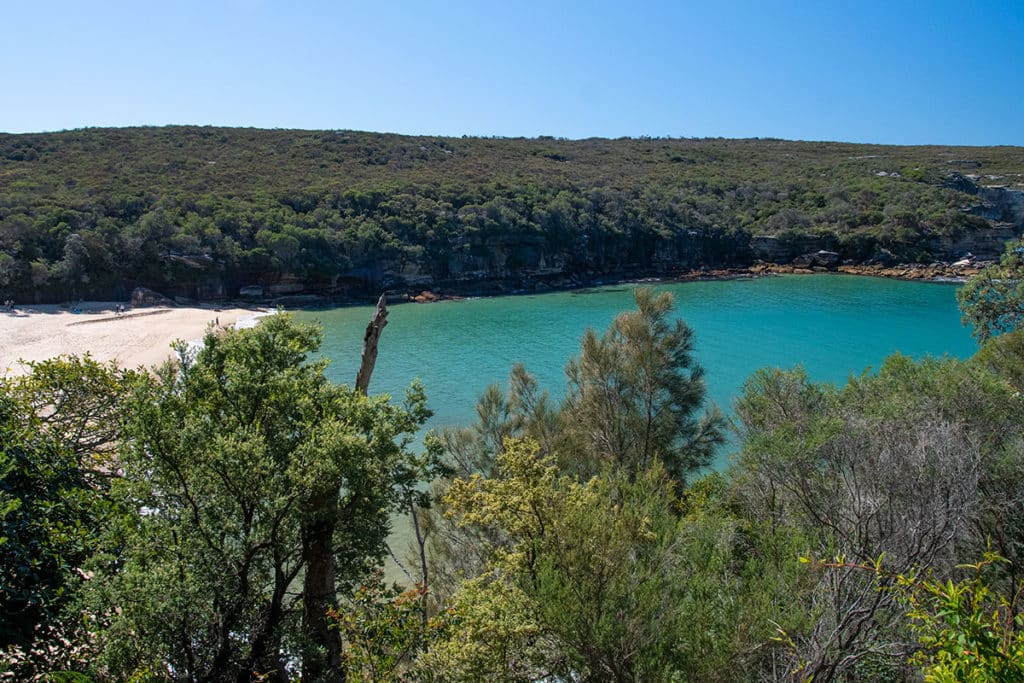 view of wattamolla beach from the trail