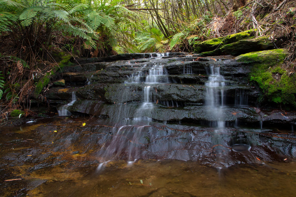 Cascades on Gordon Creek Leura