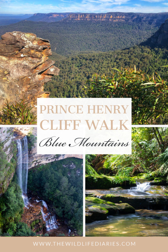 Prince Henry Cliff Walk in Blue Mountains