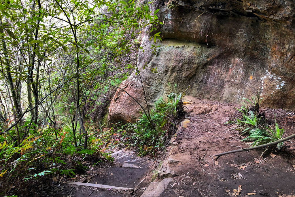Smaller cave in Lyrebird Dell