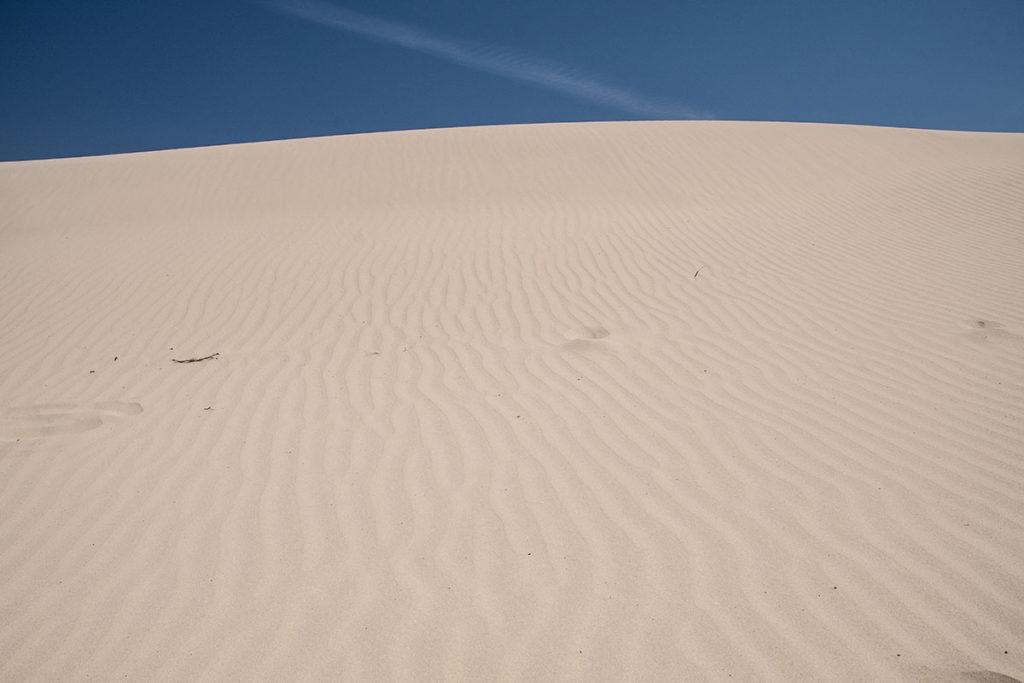 Walking through Port Stephens sand dunes