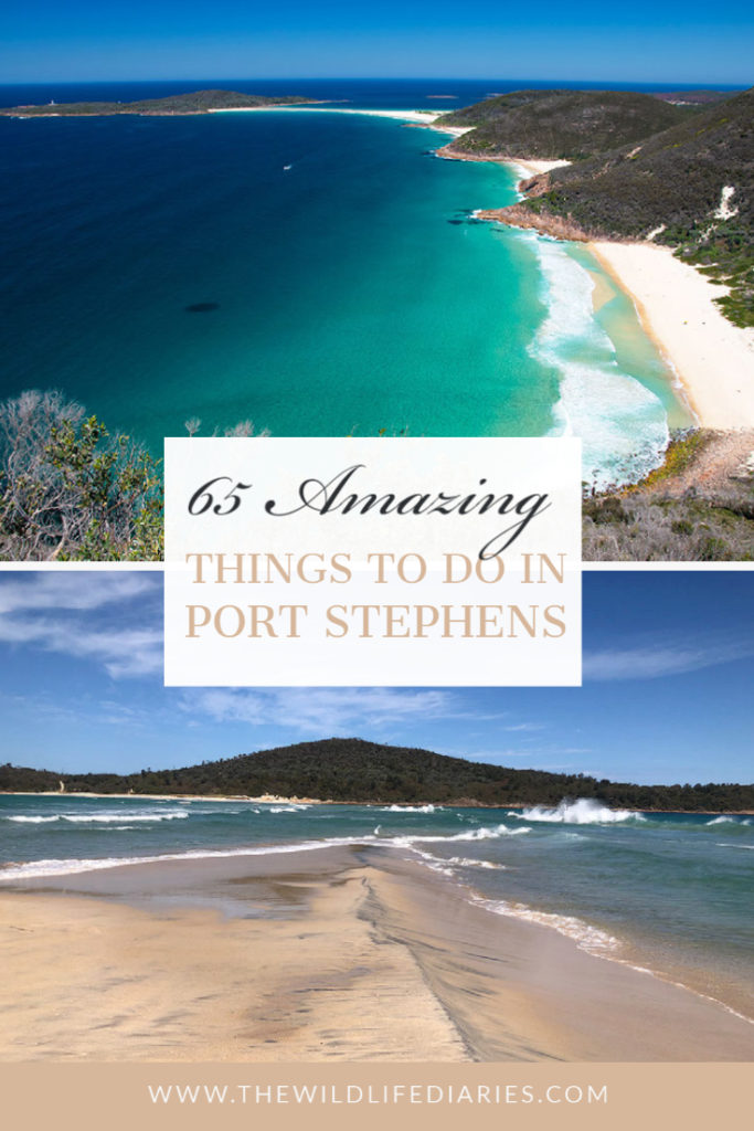 65 things to do in Port Stephens
