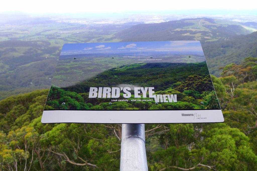 Illawarra Fly at Kangaroo Valley