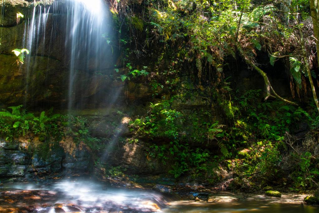 Adeline Falls along South Lawson Waterfall Circuit Walk