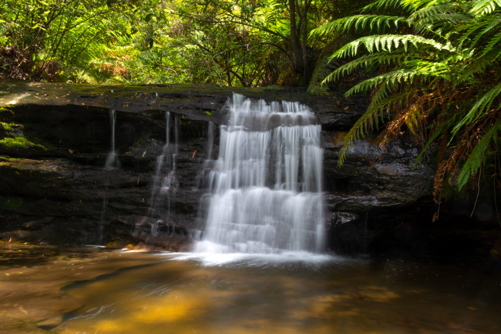 Unnamed waterfall on South Lawson Waterfall Circuit walk