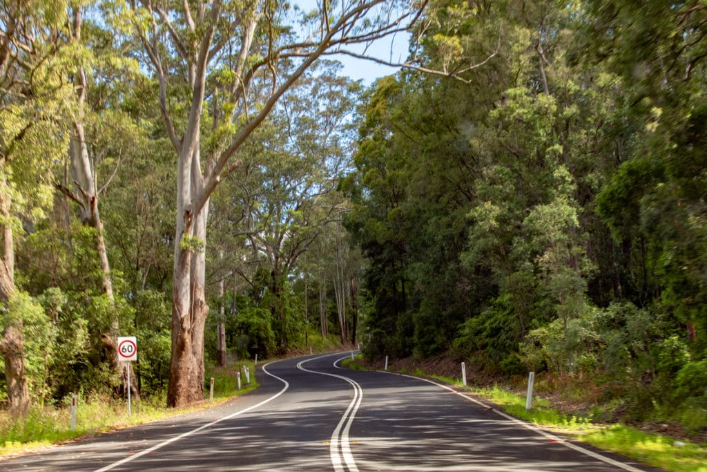 Things to do in Kangaroo Valley - drive on winding mountain roads