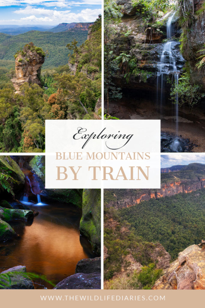 Blue Mountains by train