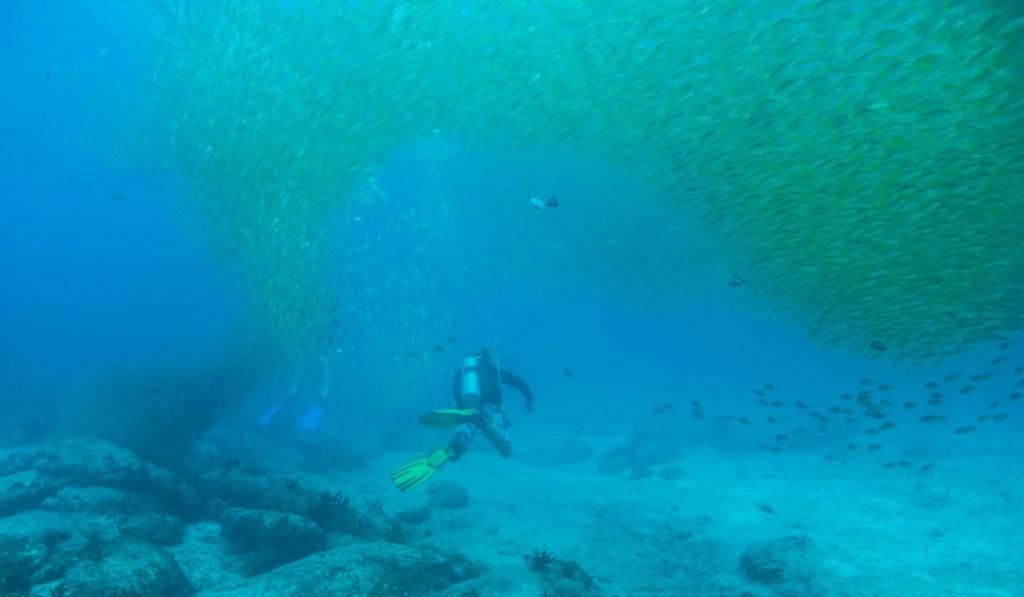 Things to do in Palawan - diving on El Nido