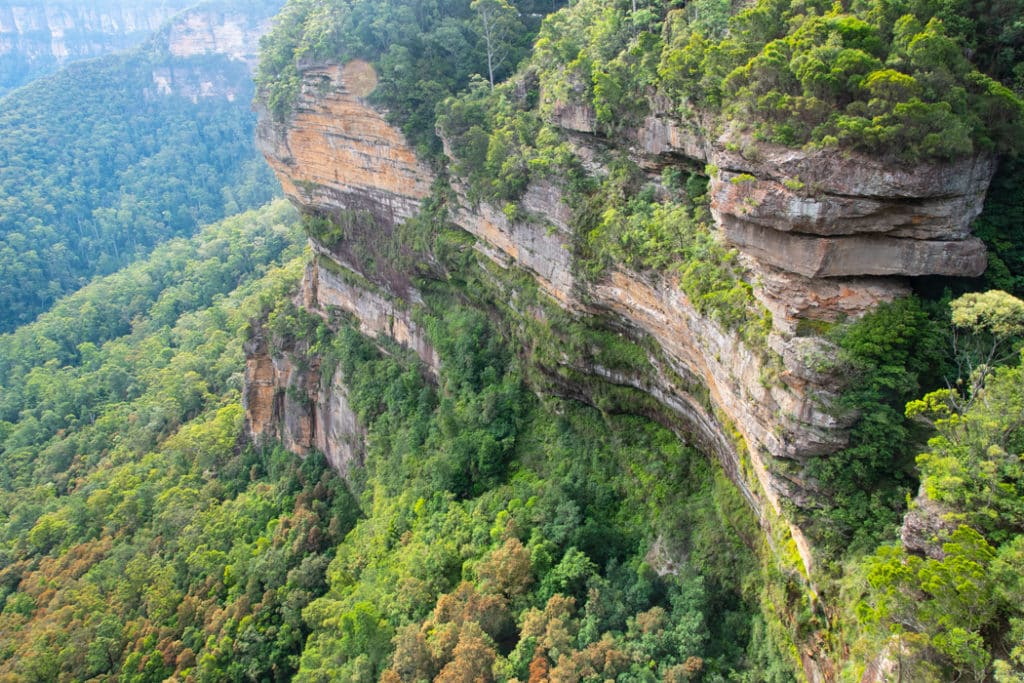 Blue Mountains lookouts - view from Fletchers lookout