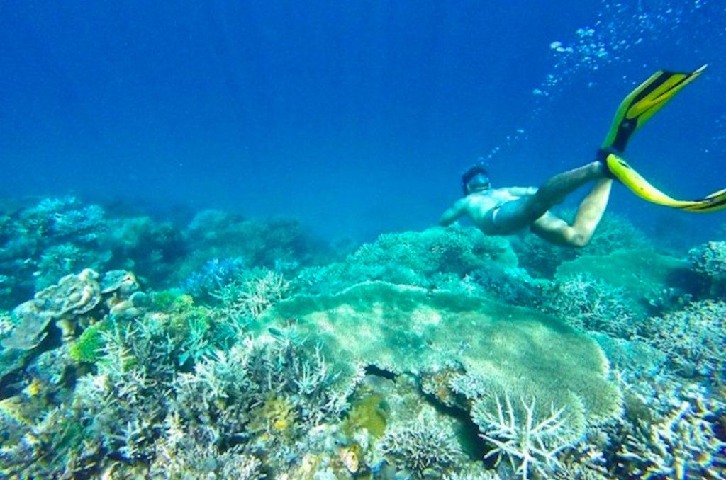 flower island philippines