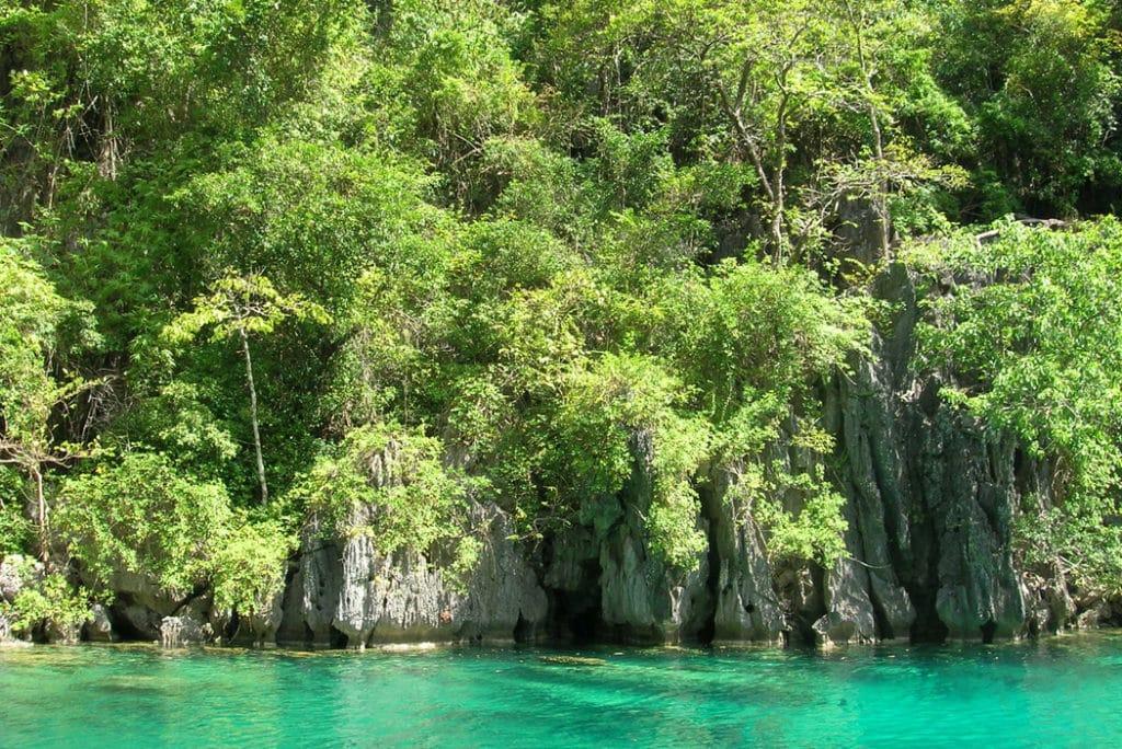 Things to do in Palawan - Kayangan volcanic lake