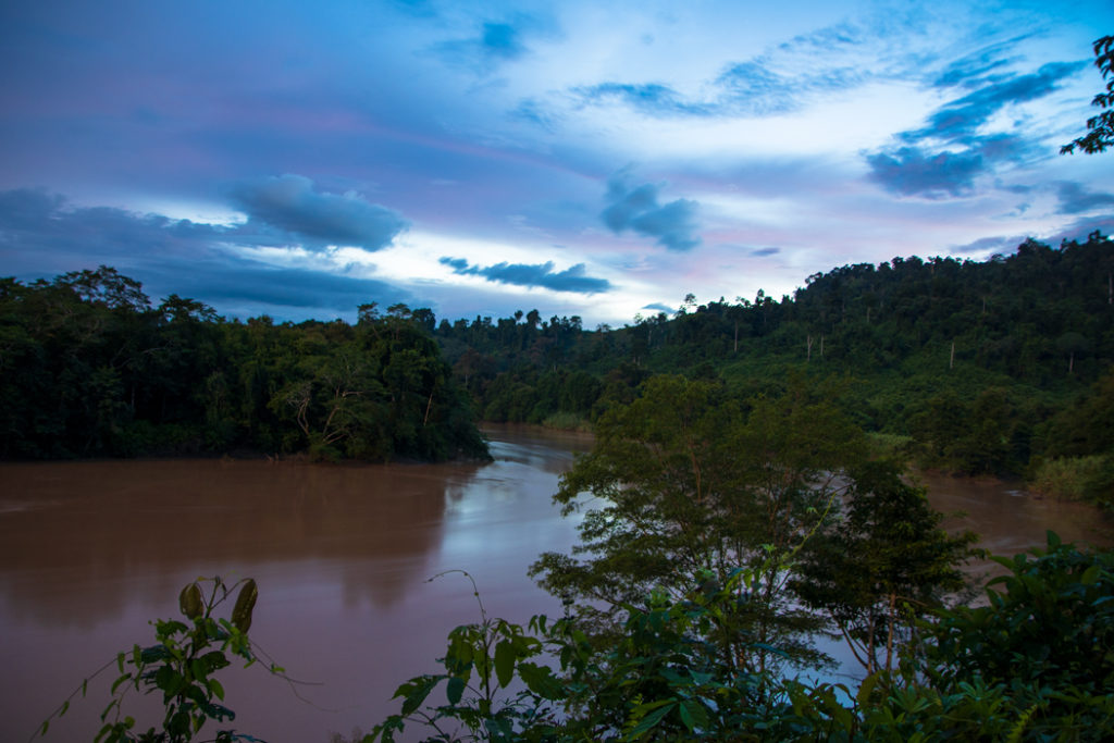Kinabatangan River at dusk