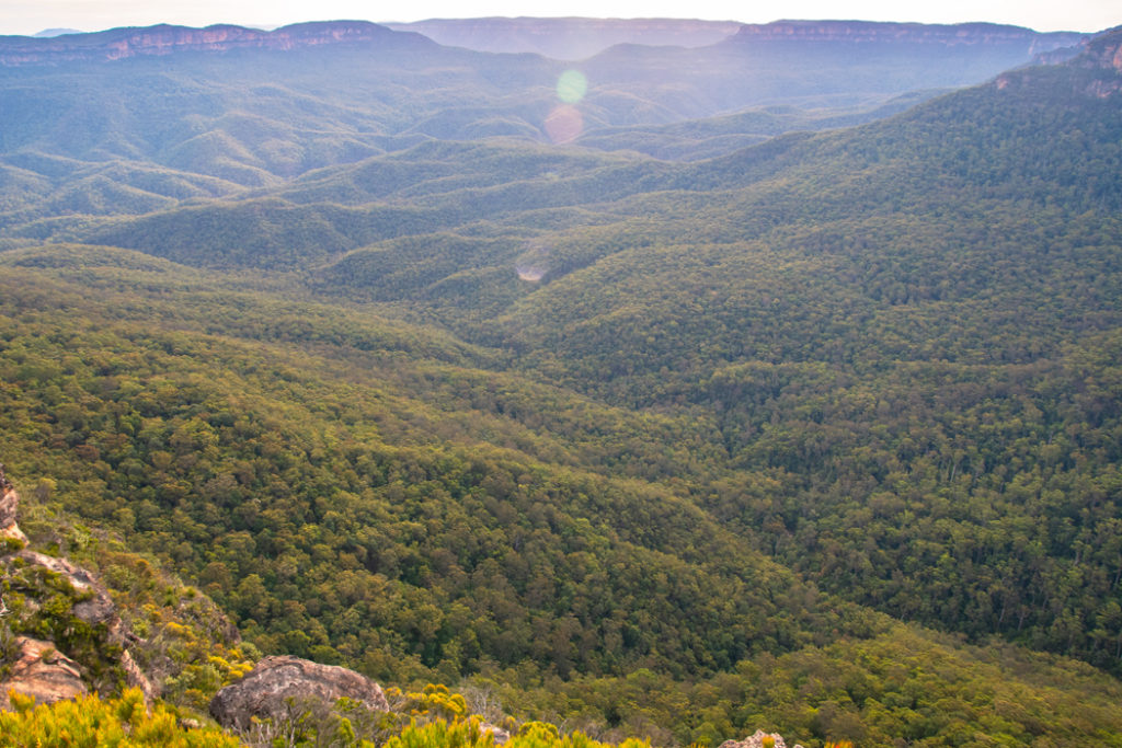 Blue mountains lookouts - Lincoln's rock